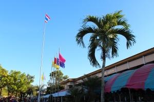 Thai flag, team color flags, school colors.